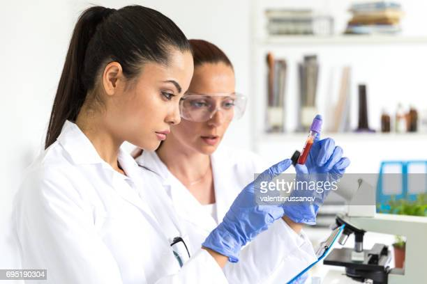 blood tests in laboratory - zika virus stock pictures, royalty-free photos & images