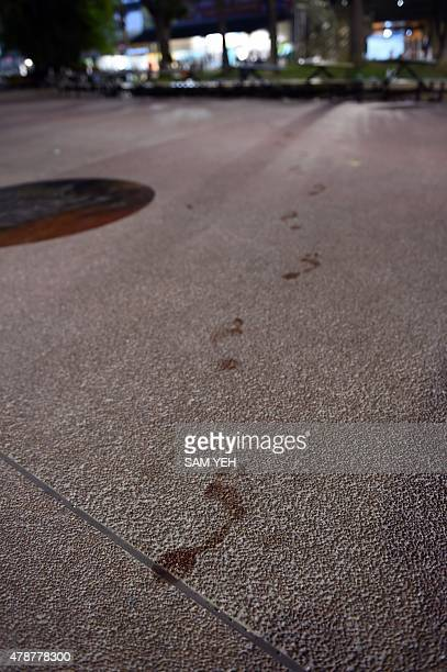 Bloody footprints are seen on the pavement at the Formosa Fun Coast amusement park after an explosion in the Pali district of New Taipei City early...