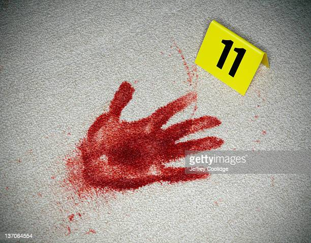Bloody Handprint and Evidence MArker