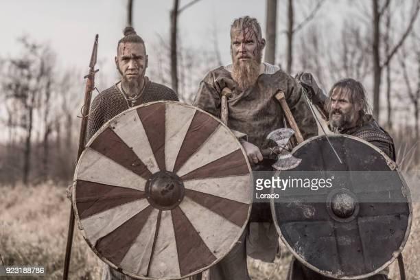 blutige wikinger-krieger auf einem schlachtfeld winterwald - wikinger stock-fotos und bilder