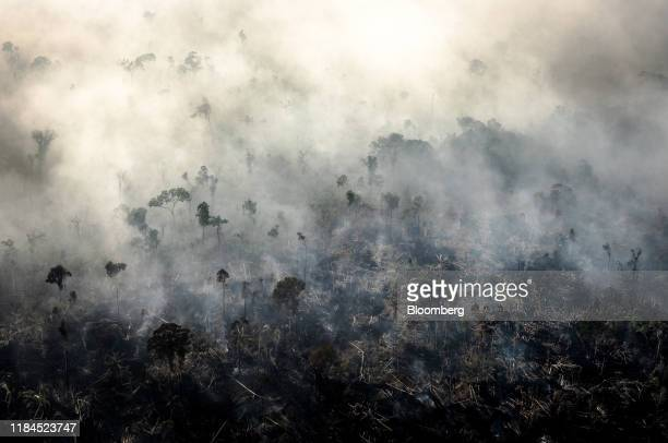 Smoke rises as a fires burn in the Amazon rainforest in this aerial photograph taken above the Candeias do Jamari region of Porto Velho Rondonia...