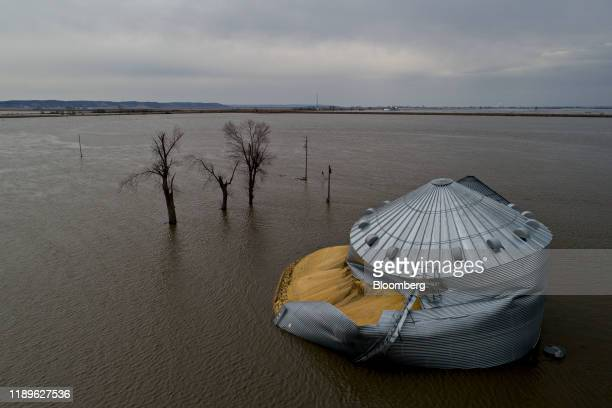 Threatened Planet Floodwaters surround corn sitting under a collapsed grain bin in this aerial photograph over Thurman Iowa US on Saturday March 23...