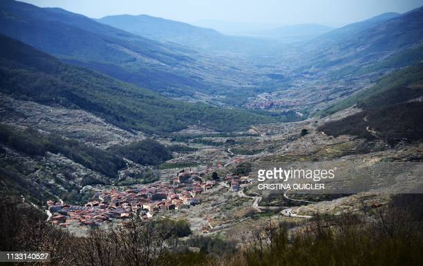 Blooming cherry trees are pictured along the Jerte valley from the Tornavacas pass in Caceres province on March 26 2019