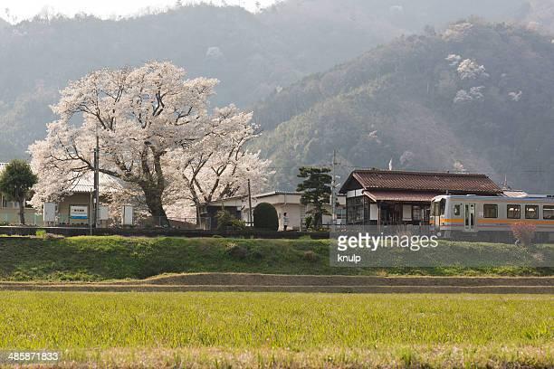 blooming station - präfektur okayama stock-fotos und bilder