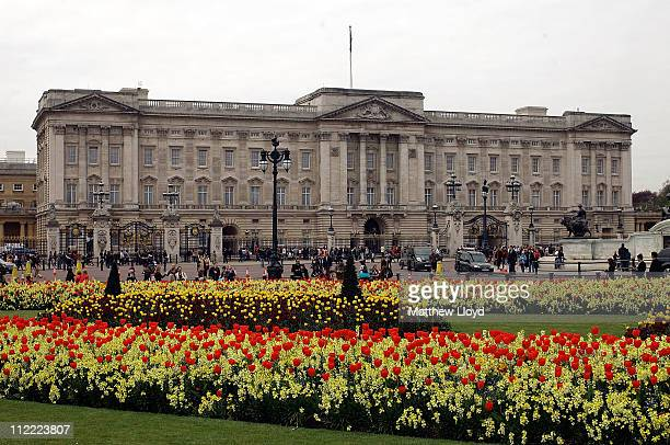 Blossom and spring flowers bloom in front of Buckingham Palace before the Royal Wedding on April 15, 2011 in London, England. Stands, media...