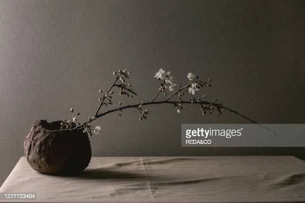 Blossom cherry branches in craft clay vase on grey table cloth Spring interior decorations