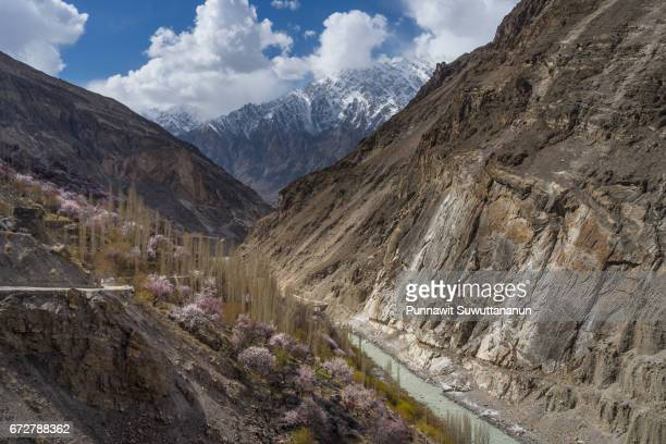 blossom in nagar valley near hunza valley, gilgit baltistan, pakistan - steep stock photos and pictures