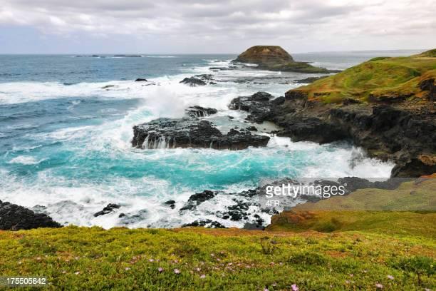 blowhole, phillip island, australia (xxxl) - victoria australia stock pictures, royalty-free photos & images