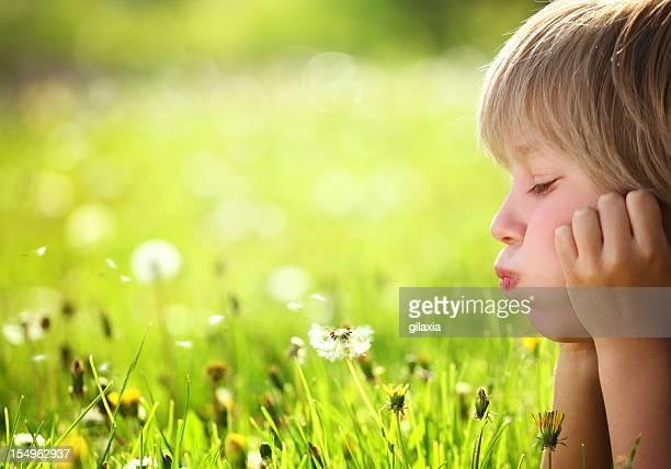 Blowing a dandelion.