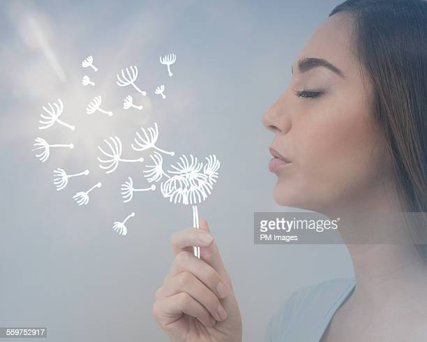 Blowing illustrated dandelion