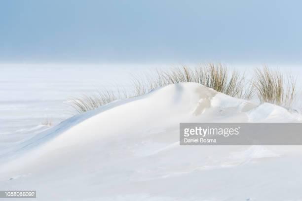 blowing snow and sand on the beach of schiermonnikoog - clima polare foto e immagini stock