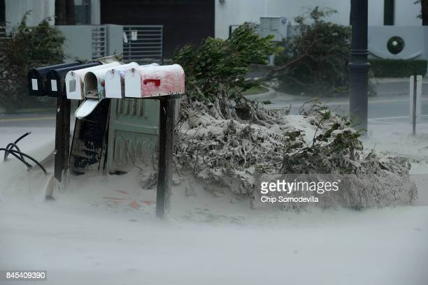 Blown sand from Pompano Beach coats bushes and mail boxes as Hurricane Irma hits the southern part of the state September 10 2017 in Pompano Beach...