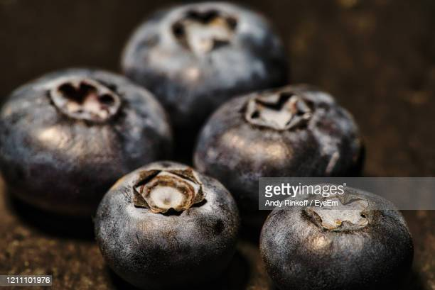 bluberries - andy rinkoff stock pictures, royalty-free photos & images