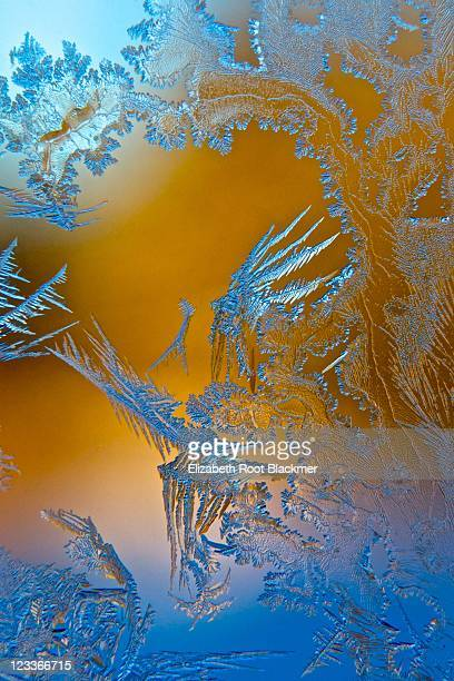 Blue and gold frost