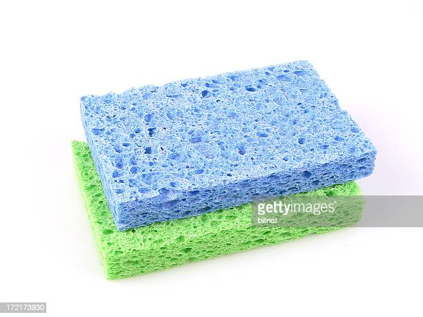 Blue and green sponge isolated on white!