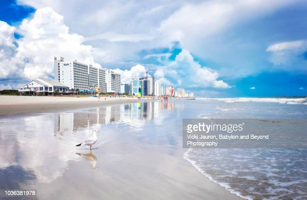 blue and white reflections at myrtle beach, south carolina - file:myrtle_beach,_south_carolina.jpg stock pictures, royalty-free photos & images