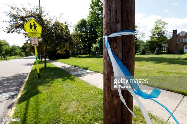 Blue and white ribbons line the streets of Wyoming Ohio as a show of support for the Warmbier family June 15 2017 in Wyoming Ohio Otto Warmbier who...