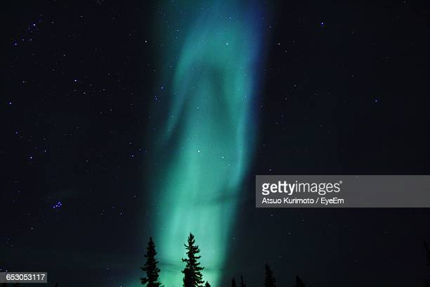 Blue Aurora Borealis With Silhouette Trees