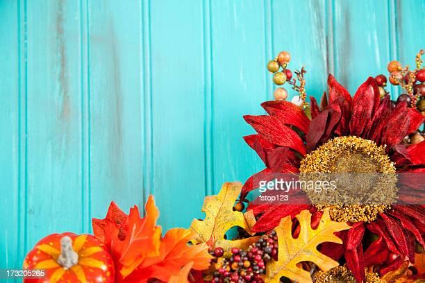 fundo azul. outono de flores na parte inferior. outono girassóis. vermelho, laranja. - vegetais - fotografias e filmes do acervo