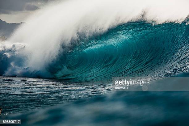 blue barrel wave, hawaii, america, usa - banzai pipeline stock photos and pictures