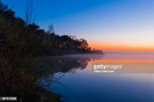 blue bay morning 'tree' - william mevissen stock pictures, royalty-free photos & images