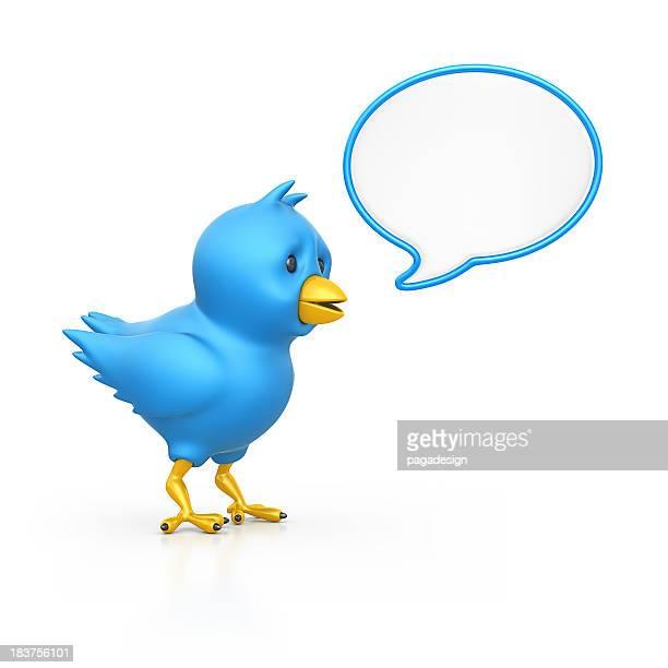 blue bird and speech bubble