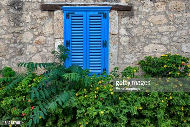 blue blinds on a stone wall with plant underneath in çeşme. - emreturanphoto stock pictures, royalty-free photos & images