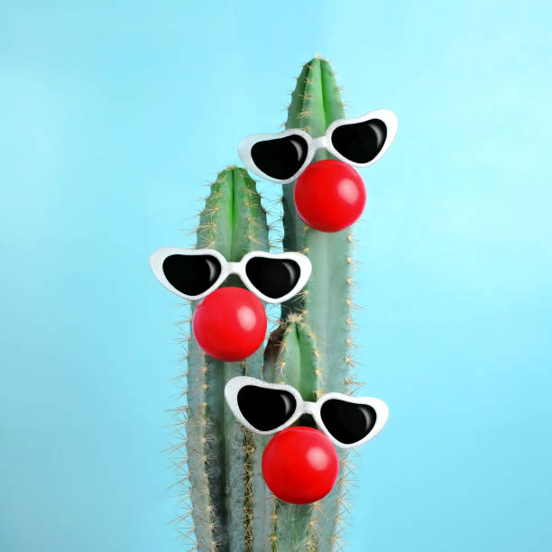 blue cactus decorated with sunglasses and clown nose