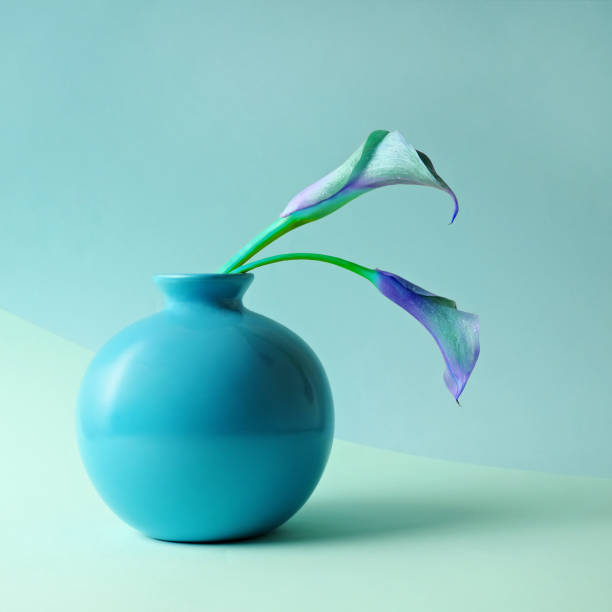 Blue Calla Lilies in Blue Vase