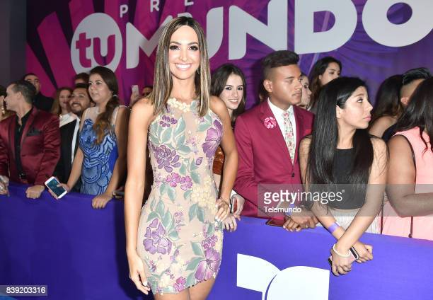 MUNDO 2017 Blue Carpet Pictured Erika Csiszer arrives to the 2017 Premios Tu Mundo at the American Airlines Arena in Miami Florida on August 24 2017