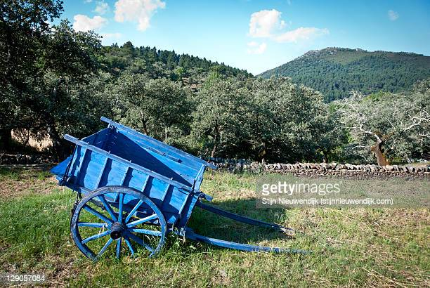 blue cart at rio molino alajar - animal powered vehicle stock photos and pictures