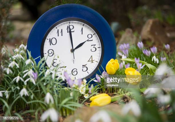 Blue clock in the middle of flower garden summer time