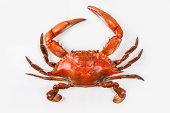Blue crab on white background that has been cooked