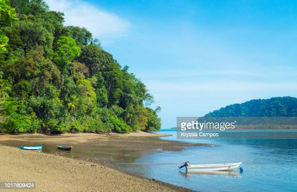 a blue day in playa cacao, golfito - costa rica - national park stock pictures, royalty-free photos & images