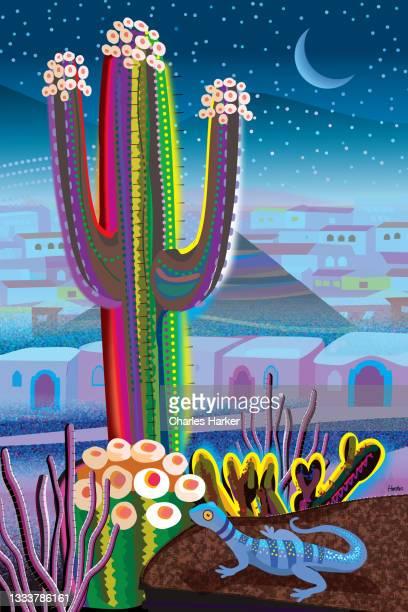blue desert at night, saguaro cactus and village in distance landscape illustration - メキシコ北部 ストックフォトと画像