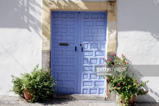 blue door with plants, cordoba, spain - andalucia fotografías e imágenes de stock