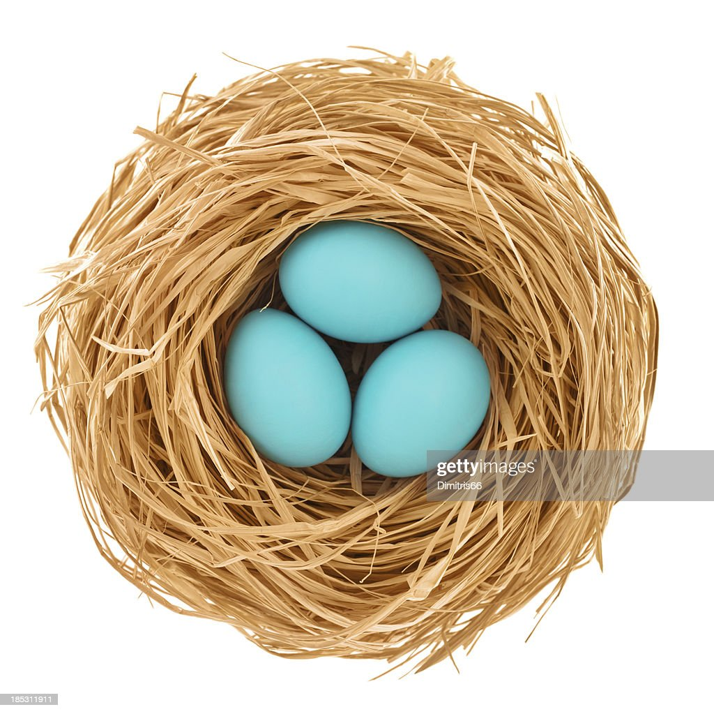 Blue easter eggs from directly above : Stock Photo