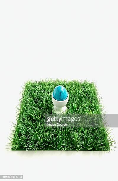 Blue egg on grass