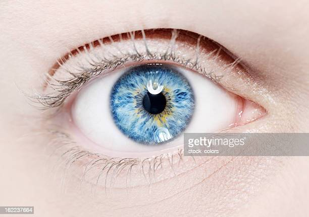 blue eye macro - yeux bleus photos et images de collection