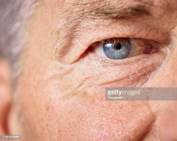 blue eye of mature man - bestimmtheit stock-fotos und bilder