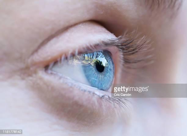 blue eye - cris cantón photography fotografías e imágenes de stock