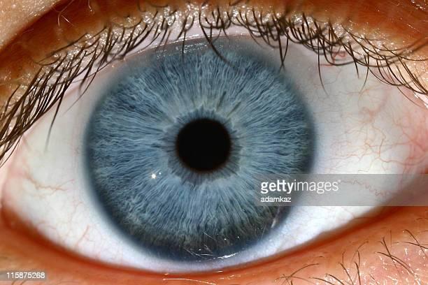 blue eye - oeil humain photos et images de collection