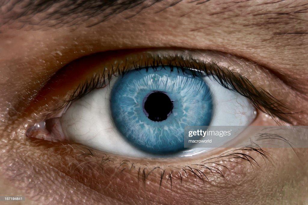 Blue eye : Stock Photo