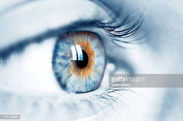 blue eye - light brown eyes stock photos and pictures