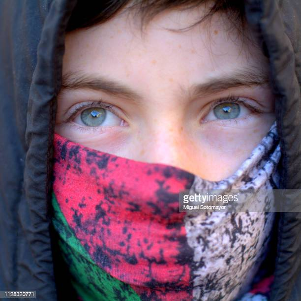 blue eyes - gray eyes stock pictures, royalty-free photos & images