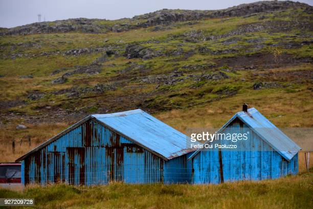 blue farmhouse at djúpivogur, eastern region, iceland. - austurland stock pictures, royalty-free photos & images