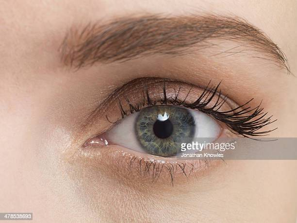 blue female eye, close up - grey eyes stock pictures, royalty-free photos & images