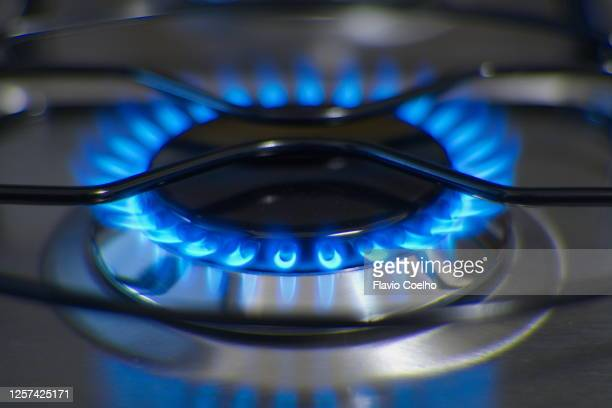 blue flames from gas burner - butane stock pictures, royalty-free photos & images