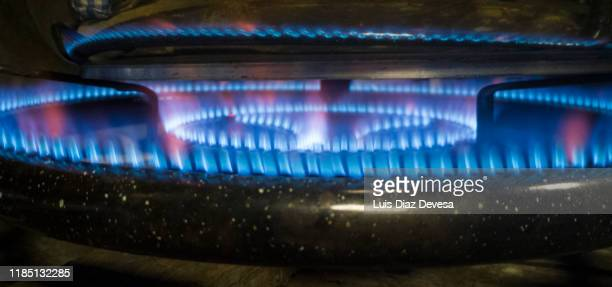 blue flames from gas stove burner a kitchen gas range. - bunsen burner stock pictures, royalty-free photos & images