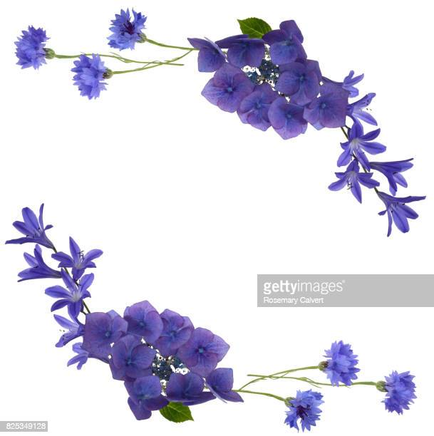 Blue flowers create design top right & bottom left of copy space.